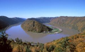 Donauschlinge_Schloegen